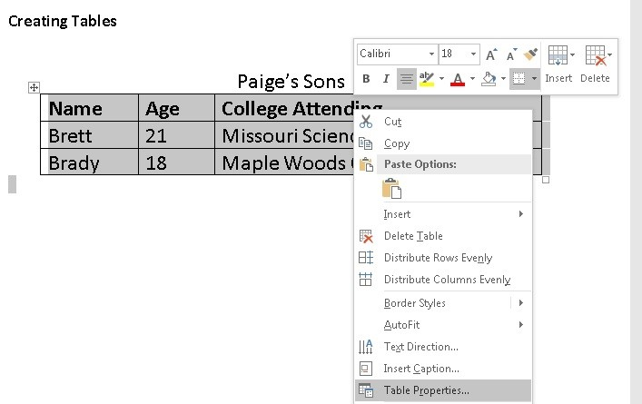 "Figure 9: Screenshot of the Paige's Sons Table. The table has been selected and right clicked on. A menu appears. At the very bottom of the menu ""Table Properties"" is shaded in dark gray."